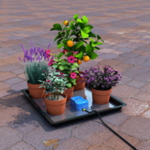 Easy2GO Holiday Watering System