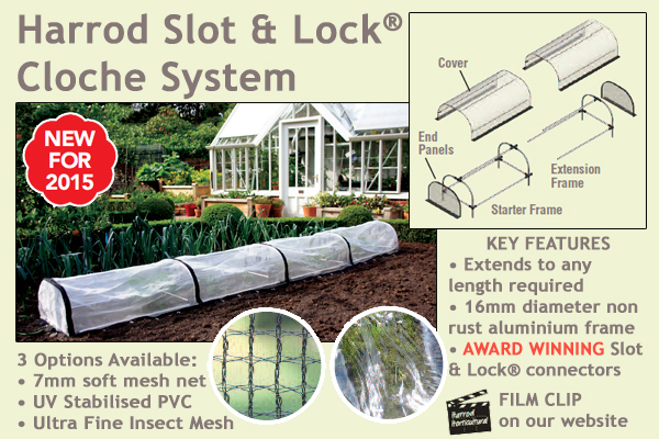 Harrod Slot & Lock Cloche System