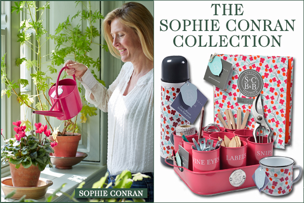 The Sophie Conran Collection